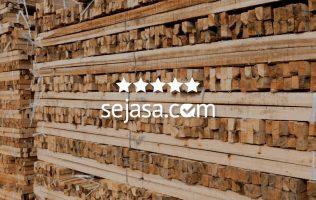 daftar harga kayu terbaru