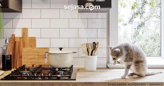 Dapur Bersih dan Dapur Kotor, Perlukah?