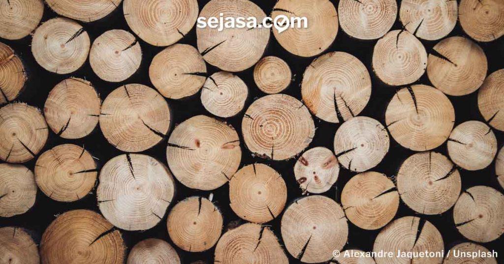 material kayu